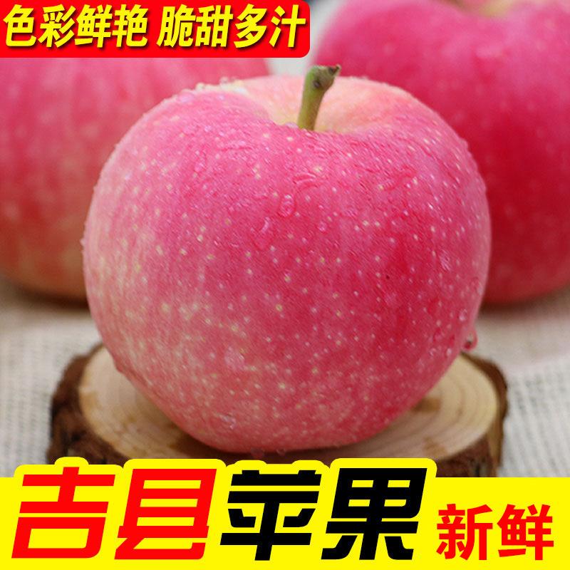 Jixian apple in Shanxi Province fresh red Fuji apple crisp and sweet fruit full package mail big fruit, rock sugar and duckweed fruit