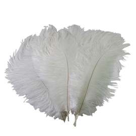 10pcs White Ostrich Feathers 30-34cm/12-14inch Decorative