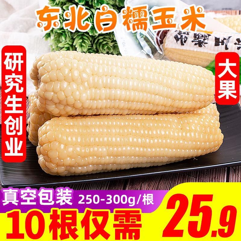 东北白糯玉米现摘真空10根甜玉米笋包邮即食水果整箱蔬菜当季新鲜