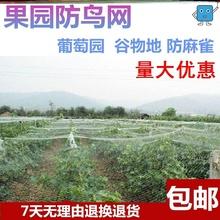 隔断防虫网大棚防护罩花园围网蔬菜百香果围栏网树葡萄通风口果树