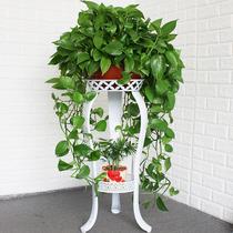 歐式花架鐵藝多層室內落地式綠蘿花架子客廳置物陽臺多肉家用花盆