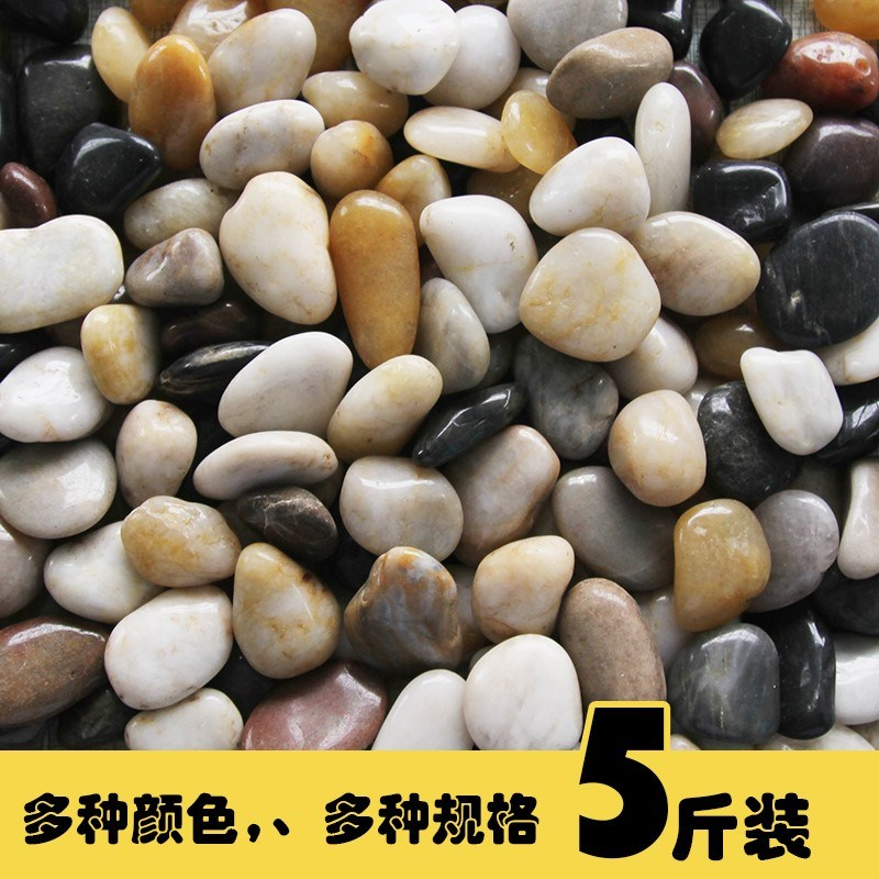 彩色石子五彩石头白色鹅卵石天然其它园艺用品色水培植物固定用