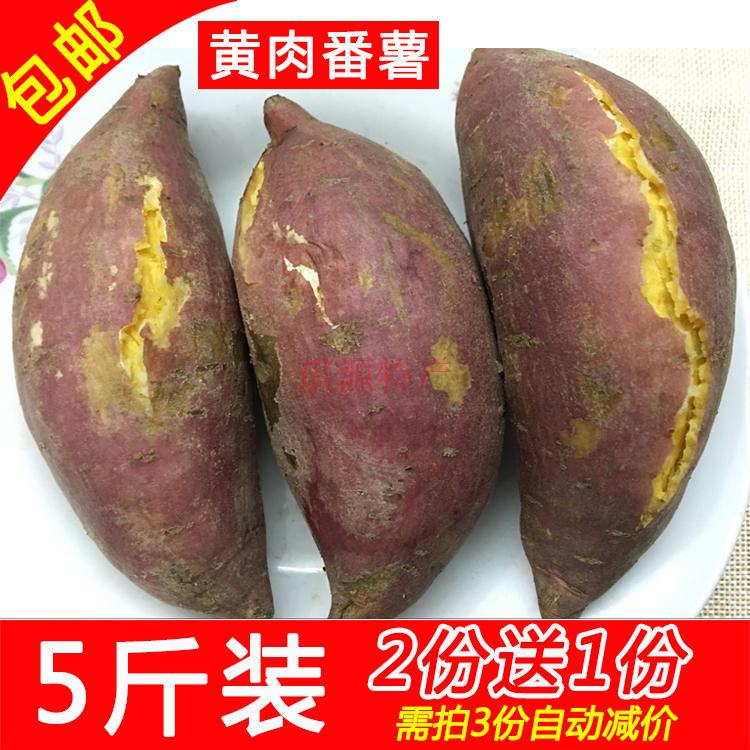 广东高州黄肉番薯粉甜软糯黄心农家红薯地瓜山芋农家特产包邮5斤(非品牌)