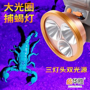 蝎子灯紫光抓捉逮捕蝎超亮强光头灯照蝎子灯捕蝎灯专用充电头戴式