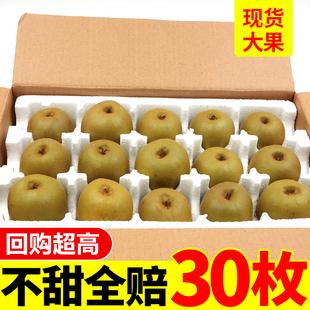 正宗四川红心猕猴桃新鲜孕妇水果大果包邮当季奇异果整箱弥猴桃10