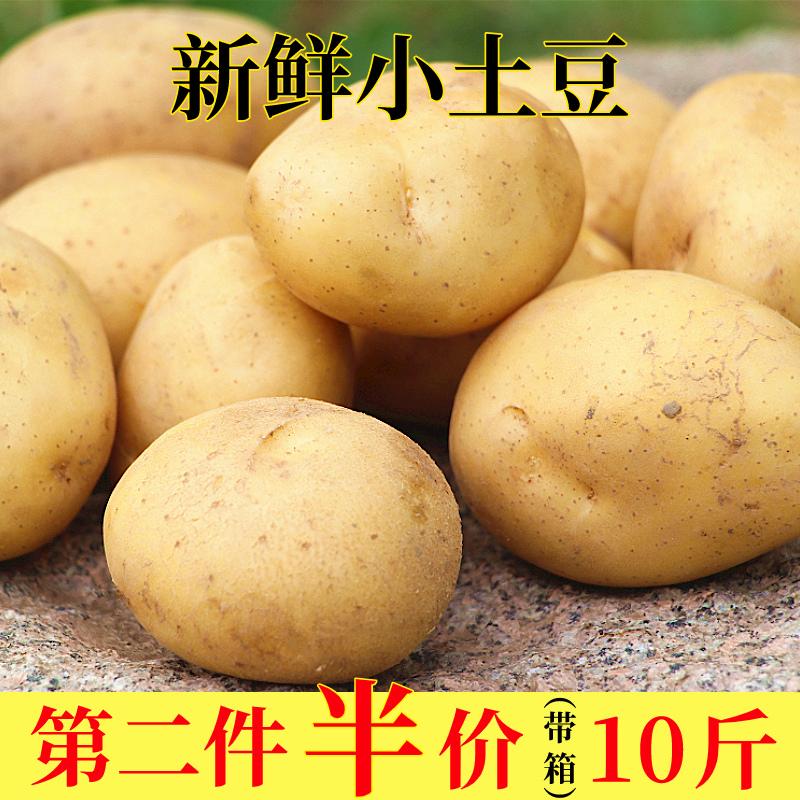 新鲜小土豆5斤包邮马铃薯富硒迷你黄心小土豆农家自种小洋芋蔬菜