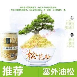 陈姐塞上松 野生东北油松 无糖无添加 罐装 松花粉 150g图片