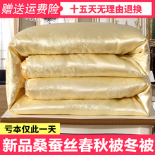 Genuine silk quilt 8 Jin / 10 jin thickened warm winter quilt single double spring and autumn quilt silk air conditioning quilt core