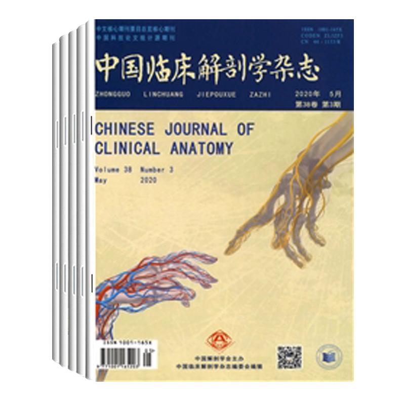 中国临床解剖学共6期wlqk医学杂志