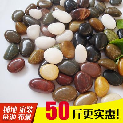 鹅卵石雨花石小石子天然原石鱼缸花盆鹅软石庭院装饰园艺五彩石头