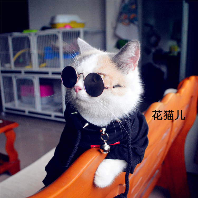 Flower cat fashion trend pet cat dog sunglasses metal frame round sunglasses for photography