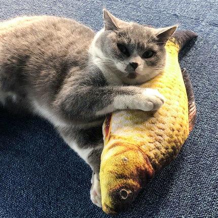 逗猫棒猫玩具鱼仿真猫薄荷猫猫磨牙小猫抱枕宠物猫咪用品逗猫玩具