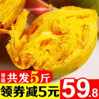 蛋黃果新鮮包郵5斤帶箱熱帶應季6當季整罕見水果特產10海南雞蛋果
