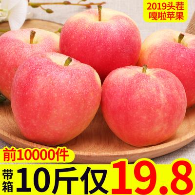苹果水果新鲜当季带箱10斤整箱嘎啦萍果应季脆甜陕西红富士平果5