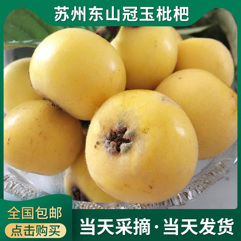 超甜现货苏州东山新鲜冠玉枇杷新鲜水果5斤礼盒装顺丰包邮