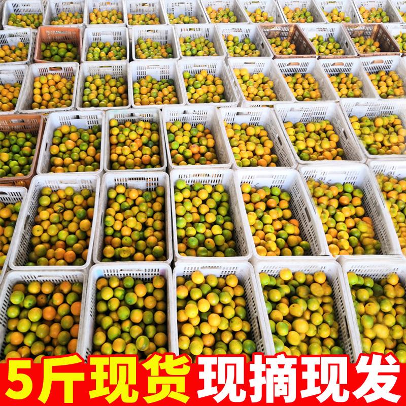 橙子新鲜5斤湖北夏橙秭归伦晚应季水果当季整箱小橙子时令脐橙