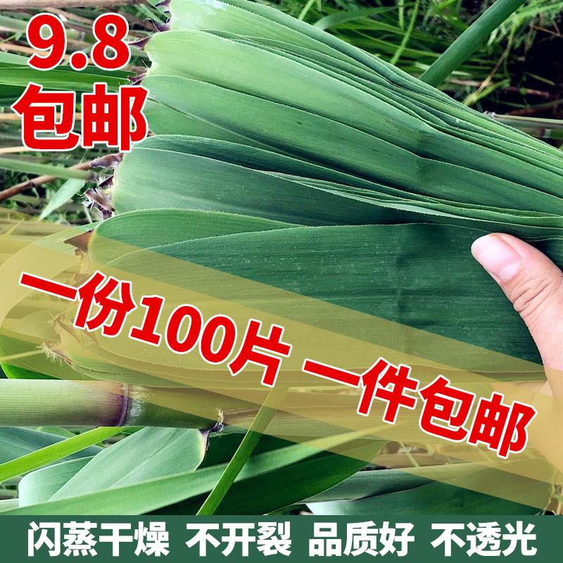 干粽叶包粽子的大粽子叶新鲜箬叶农家采摘芦苇叶100张竹精选免邮