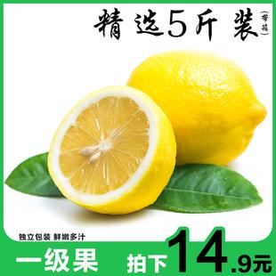 柠檬新鲜包邮5斤装 水果皮薄一级青柠檬新鲜批发四川安岳黄柠檬