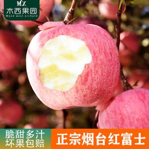 正宗烟台红富士苹果新鲜脆甜山东栖霞应季当季水果3/5斤10斤包邮