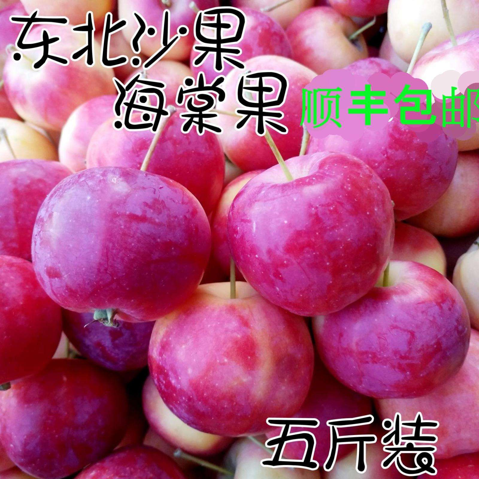 东北沙果 糖心 黑龙江糖心海棠果海棠果新鲜水果沙果新鲜当季特产