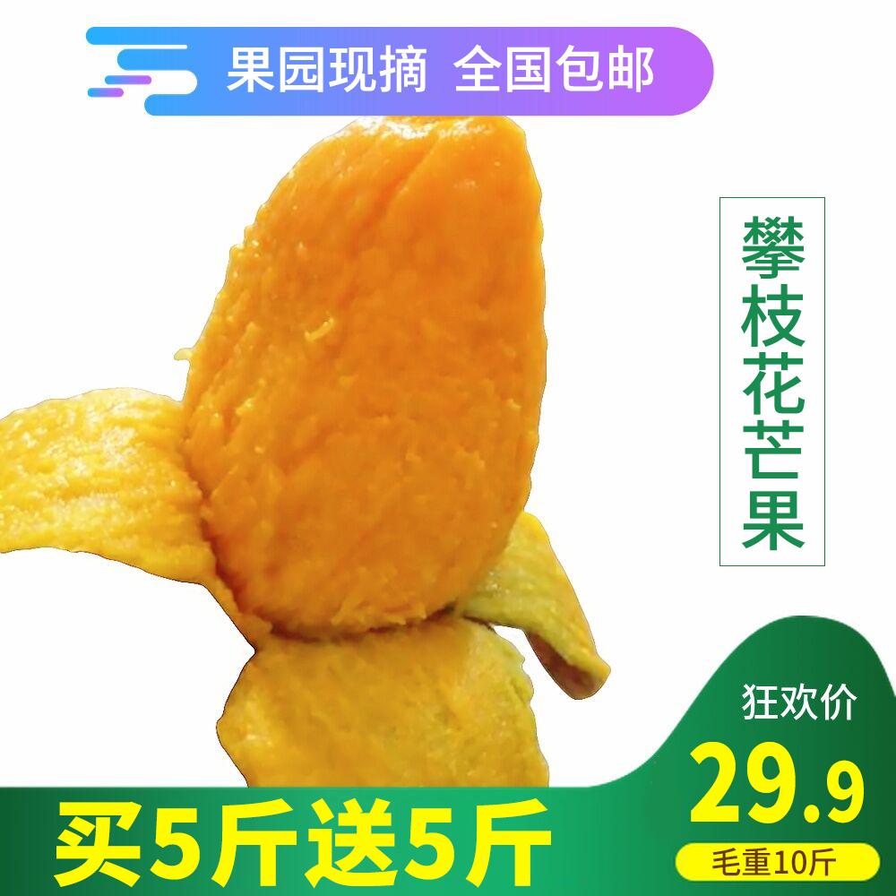 新鲜芒果包邮带箱10斤攀枝花现摘吉禄芒果当季超甜水果大芒果