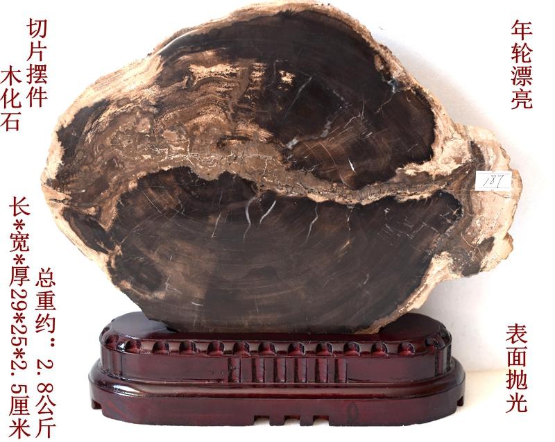Ископаемые Артикул 592831973773