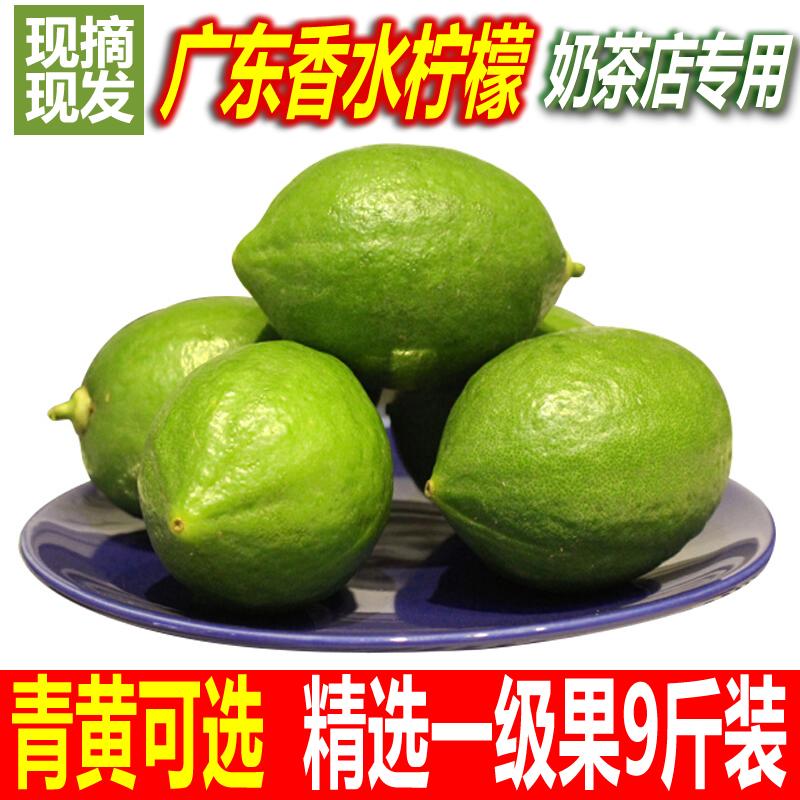 广东新鲜现摘香水柠檬一级青柠檬9斤包邮 无籽柠檬水果奶茶店专用
