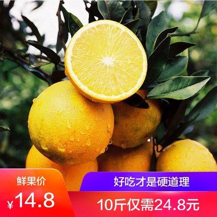 云南高山冰糖橙5斤装 新鲜现摘应季手剥甜橙子拍2件发10斤实惠装