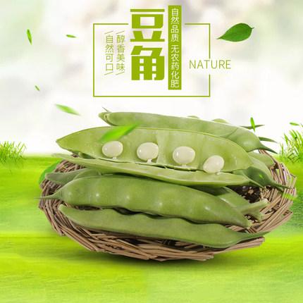 东北豆角九月青油豆角一点红面豆角蔬菜青菜新鲜5斤宽豆角特产