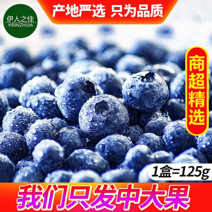 蓝莓鲜果新鲜水果当季整箱包邮应季现货4盒大果丹东蓝莓500g蓝梅
