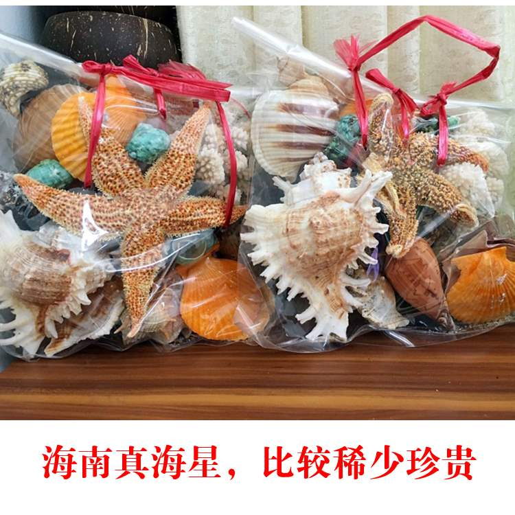 ? Chrysanthemum landscape decoration natural Round White Coral Sea mushroom conch Fish Tank Ornament crystal degaussing,