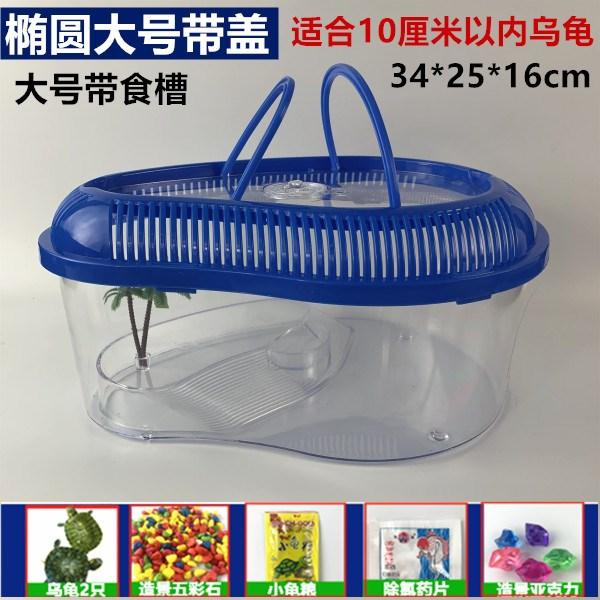 限10000张券寝室可以养的宠物野生乌龟活物缸带晒台多规格龟盆宠物盒儿童礼物