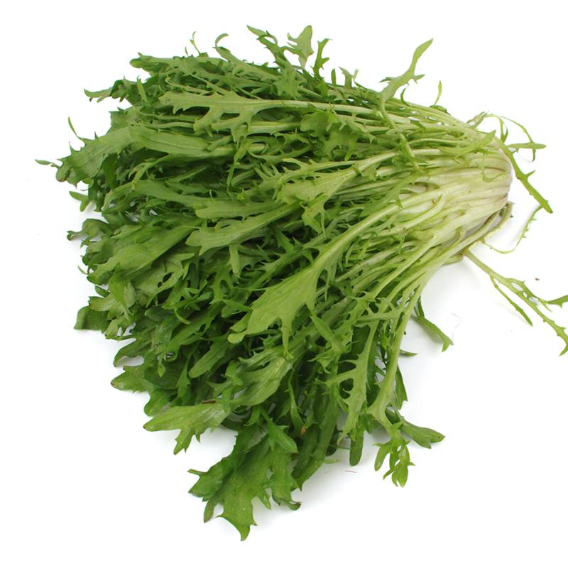 苦叶生菜/苦苣500克无公害新鲜蔬菜色拉 菜市场生鲜超市沃鲜汇