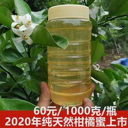 2020年纯正柑橘蜜天然柑橘花蜂蜜自产无添加原生态橘子蜜儿童2斤