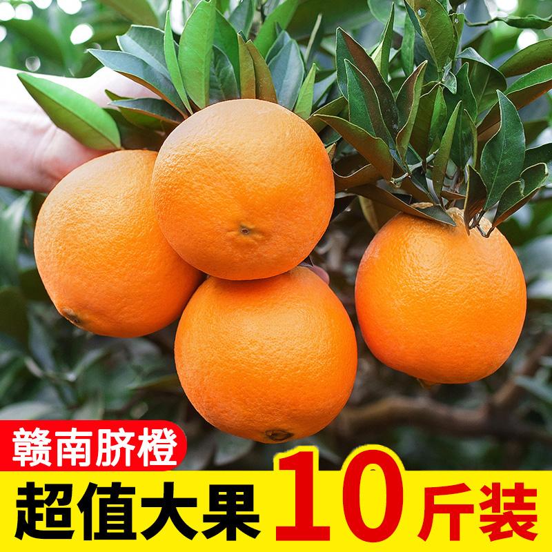 正宗赣南高山脐橙新鲜水果甜橙子特级10斤大果现摘整箱当季夏橙子