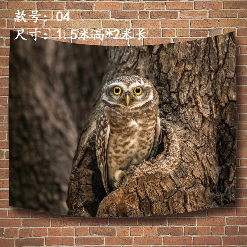 野生动物猫头鹰挂布海报鸟类飞禽走兽鸮枭3D印染超大版定制背景布