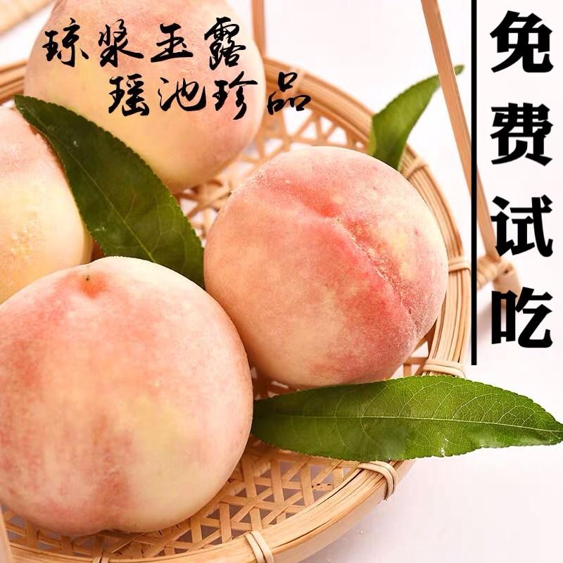 正宗奉化水蜜桃水果新鲜桃应季桃子PK无锡阳山南汇水密桃1斤试吃