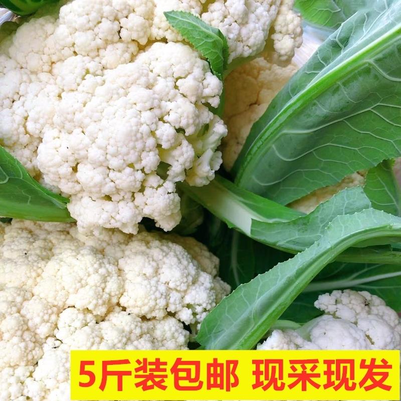 小林淘品花菜西兰新鲜蔬菜农家自种现采四川乐山犍为特产5斤包邮