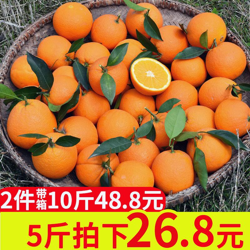 伦晚脐橙5斤开县春橙应季水果奉节橙子新鲜冰糖橙包邮10斤拍两份