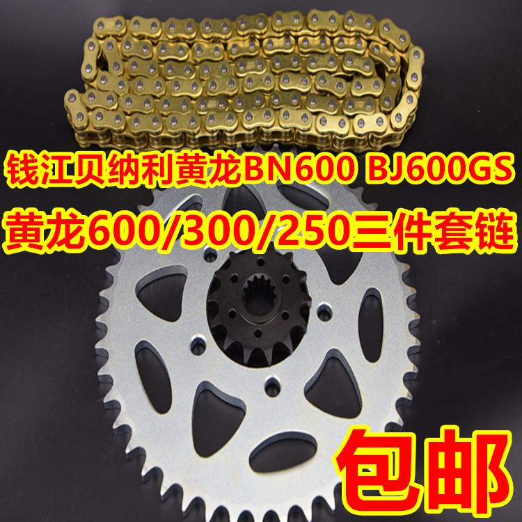 钱江贝纳利黄龙BJ600GS300/250幼狮500金鹏502链轮牙盘征和油封链