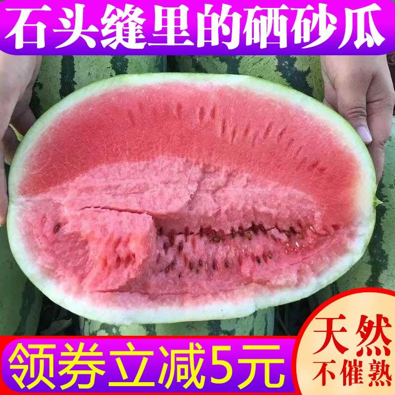 净重13斤宁夏中卫硒砂瓜石头缝里的新鲜水果压砂瓜香甜沙瓤西瓜夏