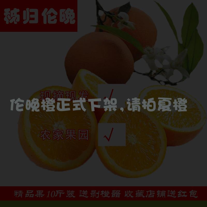 秭归伦晚脐橙10斤湖北宜昌春橙手剥甜橙子伦晚鲜橙子孕妇姊齐血橙