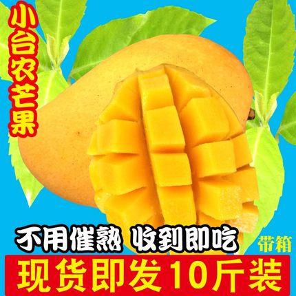 海南小台农芒果新鲜包邮10斤带箱树上自然熟特甜小台芒鸡蛋芒水果