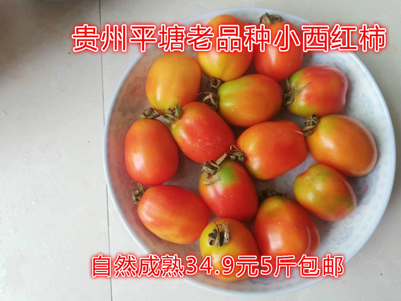 贵州平塘现摘老品种沙瓤自然熟西红柿新鲜水果高原蔬菜5斤包邮