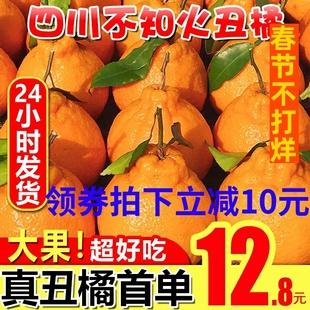 四川丑橘新鲜当季整箱10斤柑不知火