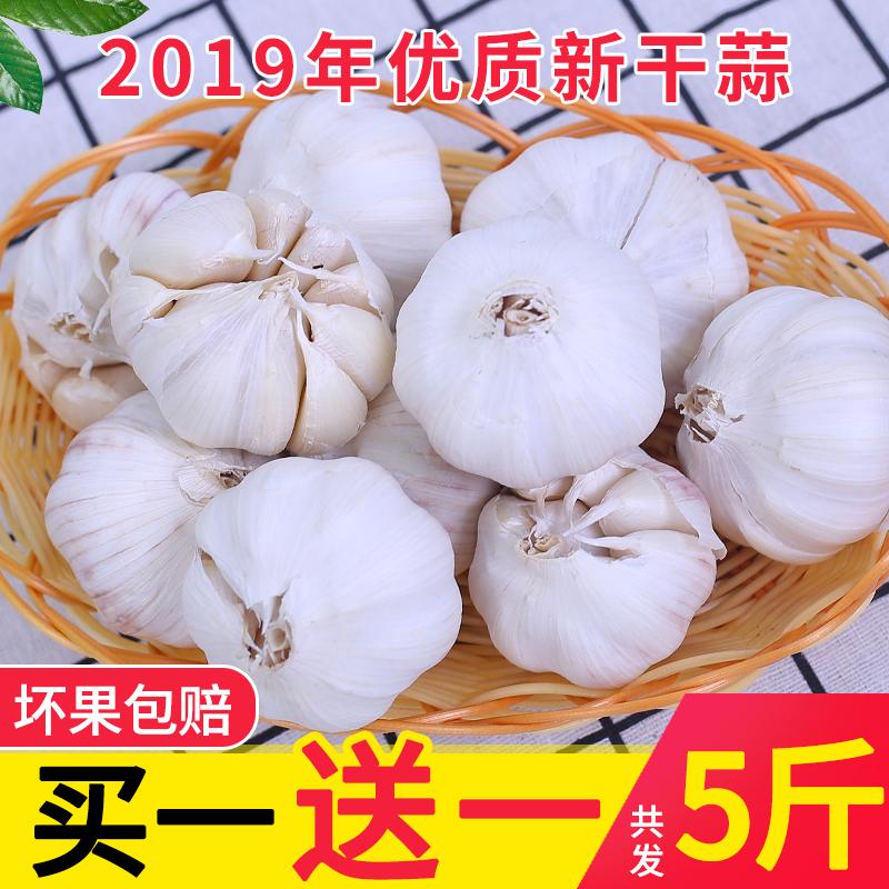 山东2019新鲜干5斤干蒜金乡大蒜头
