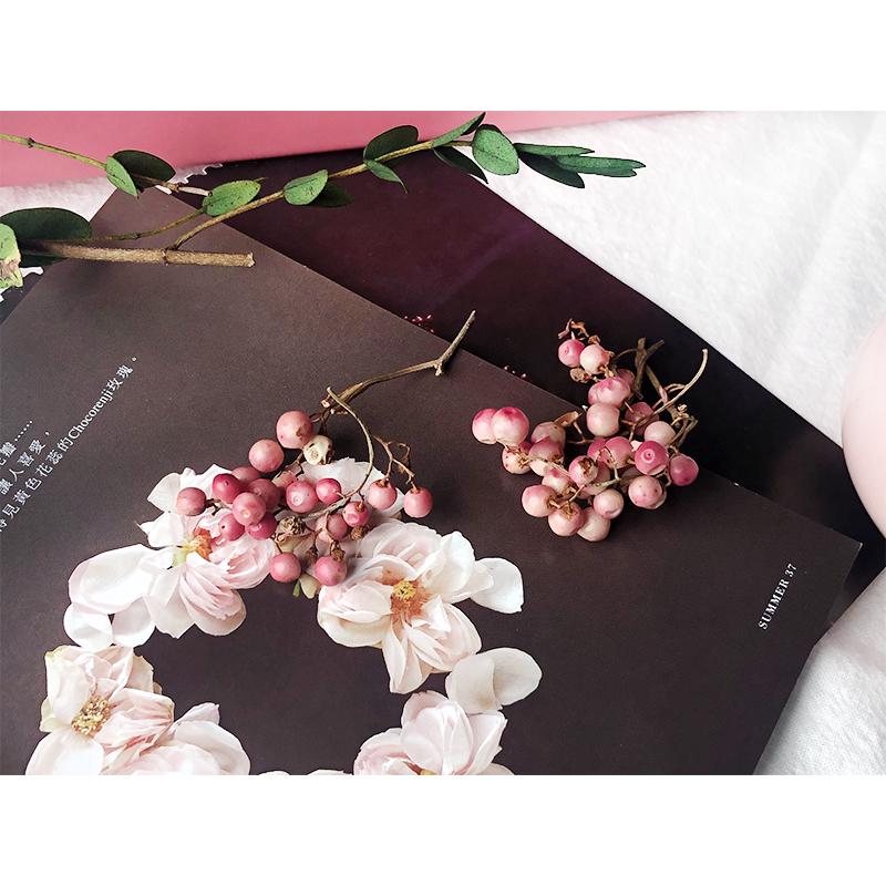 11月22日最新优惠永生花大地农园粉缨果果 素材玫瑰辅材 5g入