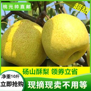 现摘砀山梨整箱10斤当季新鲜水果安徽应季梨子汤山酥梨脆皇冠包邮12.8元