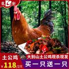 农家散养大公鸡买一只送一只