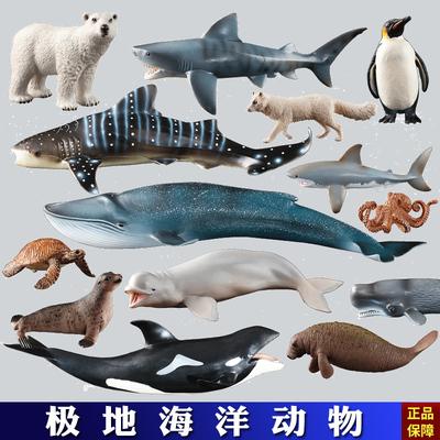 正版全新仿真动物模型玩具海洋动物海豚海龟鲸鱼鲨鱼
